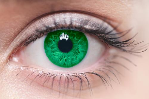 Die Farbe Deiner Augen Bestimmt Was Fur Einen Sexualpartner Du Brauchst