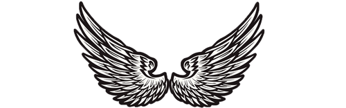 What Angel Wings Would You Choose? Pick One To Reveal Your Blessings! 8