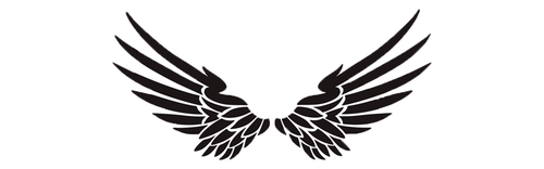 What Angel Wings Would You Choose? Pick One To Reveal Your Blessings! 2
