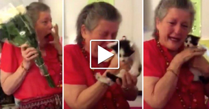 [Heartwarming Video] Students Have A Sweet Present For Their Grieving Teacher After Her Cat Dies.