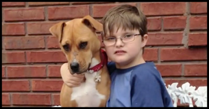 Watch What Happens When An Autistic Boy Meets A Severely Abused Puppy