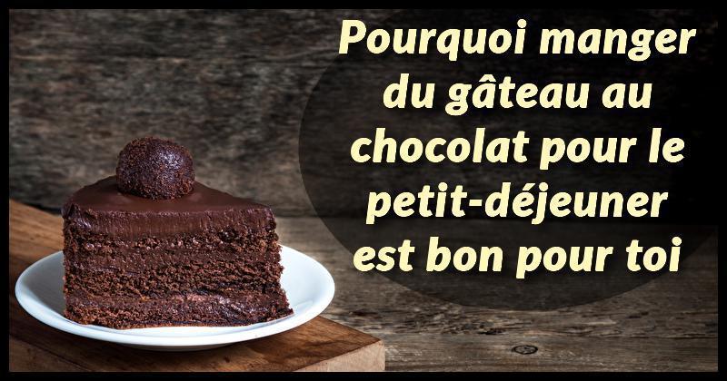 La recherche montre que manger du g teau au chocolat pour le petit d jeuner est bon pour ton - Gateau pour le petit dejeuner ...