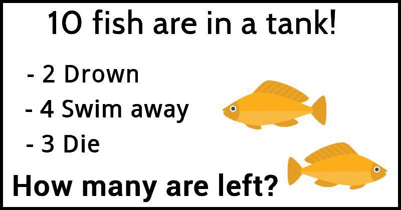 Can You Solve This Fish Math Riddle In Less Than 60 Seconds