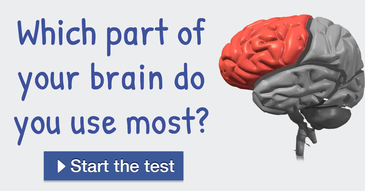 Which part of your brain do you use most?